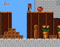 Chip N Dale on NES